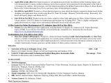 Node Js Developer Sample Resume Aaron Web Resume