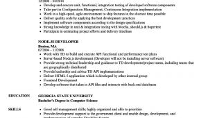 Node Js Developer Sample Resume Node Js Developer Resume Samples Velvet Jobs