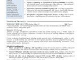 Non Emergency Medical Transportation Business Plan Template Sample Nonprofit Business Plan Business Plan Sampl Non