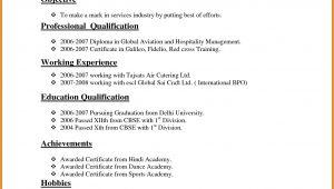 Normal Resume for Job Application Resume format normal format normal Resume 2 Resume