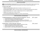 Nursing Student Resume Clinical Experience Nursing Student and Resume Examples On Pinterest