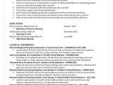 Nursing Student Resume Qualifications Kaylee 39 S Nursing Resume 2014