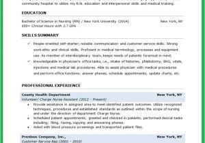 Nursing Student Resume Template Word Nursing Student Resume Creative Resume Design Templates