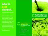 Nutrition Brochure Template Brochure Template Category Page 40 Efoza Com
