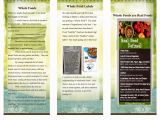 Nutrition Brochure Template Nutrition Brochure Template 5 the Best Templates Collection