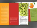 Nutrition Brochure Template Nutrition Brochure Template the Best Templates Collection