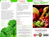 Nutrition Brochure Template Nutrition Flyer Ideas Best and Professional Templates