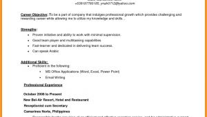 Objective In Resume for Job Application 8 Cv Objective for Job theorynpractice