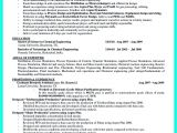 Objectives In Resume for Job Interview Objectives Of the Job are Very Important You Need to
