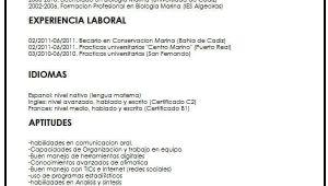 Objetivo De Un Resume Profesional Objetivos Para Un Resume Lovely 15 Ejemplos De Resume En
