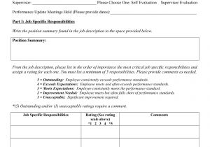 One On One Performance Review Template Monthly Performance Review Template