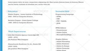 One Page Professional Resume Template 41 One Page Resume Templates Free Samples Examples