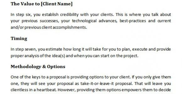 Online Marketing Proposal Template 20 Sample Marketing Proposal Templates Sample Templates