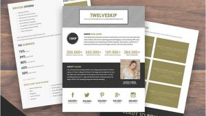 Online Press Kit Template 59 Best Images About Media Kit Inspiration A Media Kit