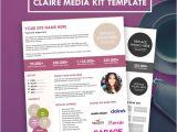 Online Press Kit Template Blogger Media Kit Press Kit Template Hipmediakits