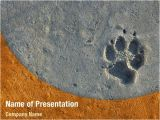 Paw Print Powerpoint Template Foot Print Powerpoint Templates Foot Print Powerpoint