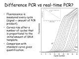 Pcr Template Amount Introduction to Real Time Pcr Ppt Download