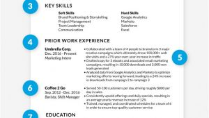 Perfect Resume for Job Interview How to Write A Great Professional Resume that Will Get You