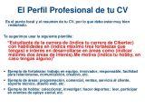 Perfil Profesional Resumen Ejemplo De Curriculum Vitae Con Perfil Profesional Buy