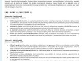 Perfil Profesional Resumen Ejemplos De Curriculum De Alto Nivel Elige Tu Modelo De