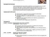 Perfil Profesional Resumen Modelo Cv Representante De Servicio Al Cliente Livecareer