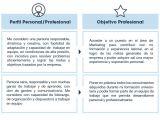 Perfil Profesional Resumen Perfil Personal Y Objetivo Profesional Usvirtualempleo