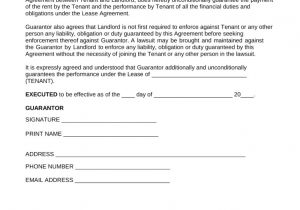 Personal Guarantee Template Uk 15 New Agreement Letter for Guarantor Pictures Complete
