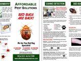 Pest Control Brochure Template 8 Best Images Of Bed Bug Flyer Bed Bug Prevention