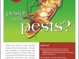 Pest Control Brochure Template Kalangiam Madras Pest Control Flyer Design 1