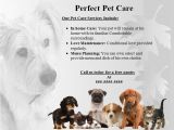 Pet Sitting Brochure Template Free Pet Sitting Flyer Template Www Imgkid Com the Image