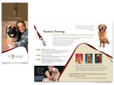 Pet Sitting Brochure Template Free Pet Training Dog Walking Brochure Template Word