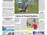 Petro Easy Card Balance Check sonntagszeitung 2020 02 23 by Grafschafter Nachrichten issuu