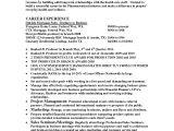 Pharmaceutical Sales Rep Resume Template Pharmaceutical Sales Rep Resume Resume Template 2018
