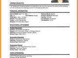Philippine Blank Resume 6 Cv format Philippines theorynpractice