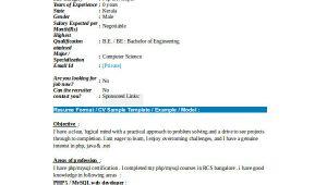 Php Fresher Resume format 21 Fresher Resume Templates Pdf Doc Free Premium