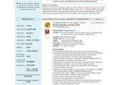 Planning Engineer Resume Word format Talal Khan Cv Civil Engineer Planning Engineer