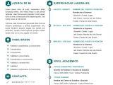 Plantillas Para Resume Profesional Cv Curriculum Vitae Profesional Plantilla Editable En Word