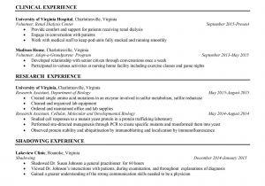 Polaris Office Resume Templates Polaris Office Resume Templates Polaris Office Templates