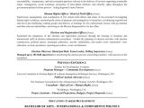 Policy Advisor Cover Letter Diplomatic Policy Consultant Resume