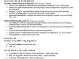 Pre Nursing Student Resume Examples Entry Level Nursing Student Resume Sample Tips