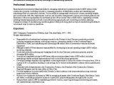 Procurement Buyer Resume Sample Procurement Resume Examples Examples Of Resumes