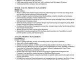 Product Analyst Resume Sample Analyst Product Management Resume Samples Velvet Jobs