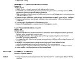 Product Analyst Resume Sample Product Strategy Analyst Resume Samples Velvet Jobs
