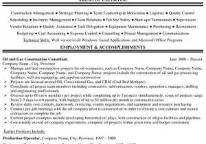 Production Engineer Resume Pdf Project Manager Resume Sample Project Manager Resume