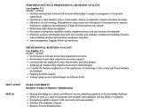 Professional Business Resume Professional Business Analyst Resume Samples Velvet Jobs