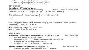 Professional Business Resume Professional Resume Example 7 Samples In Pdf