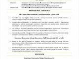 Professional Fonts for Resume 7 8 Second Job Resume Examples oriellions Com