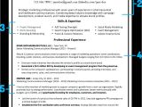 Professional Looking Resume What Your Resume Should Look Like In 2018 Gold Coast