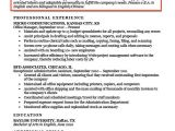 Professional Objective for Resume Resume Objective Examples for Students and Professionals Rc