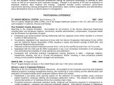 Professional organizer Resume Sample Professional organizer Resume Sample Resume Ideas